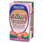 Animal Parade Gummy Bears Assorted Fruit