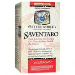 Better World Saventaro