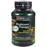 Certified Organic Mushroom Therapy