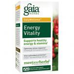 Energy Vitality