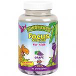 Focus Saurus For Kids