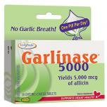 Garlinase 5000