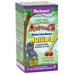 Super Earth Rainforest Animalz Multi