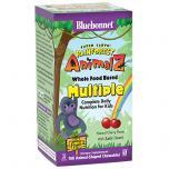 Super Earth Rainforest Animalz Multi