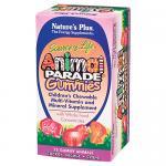 Animal Parade Gummy Bears Assorted Fruit