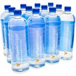 Iceland Natural Spring Water 33.8 F