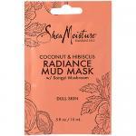 Radiance Mud Mask