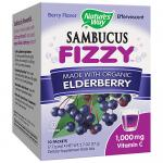 Sambucus Fizzy Elderberry